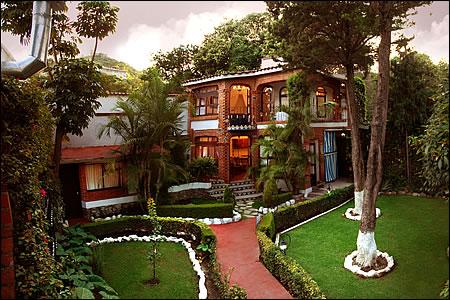 Salon jardin bugambilias puebla nimes 12 - Jardin japonais monaco nimes ...